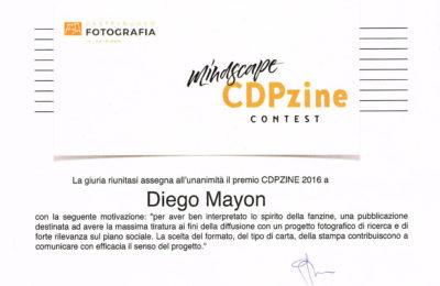 Grey Grass paper wins CDPZine2016