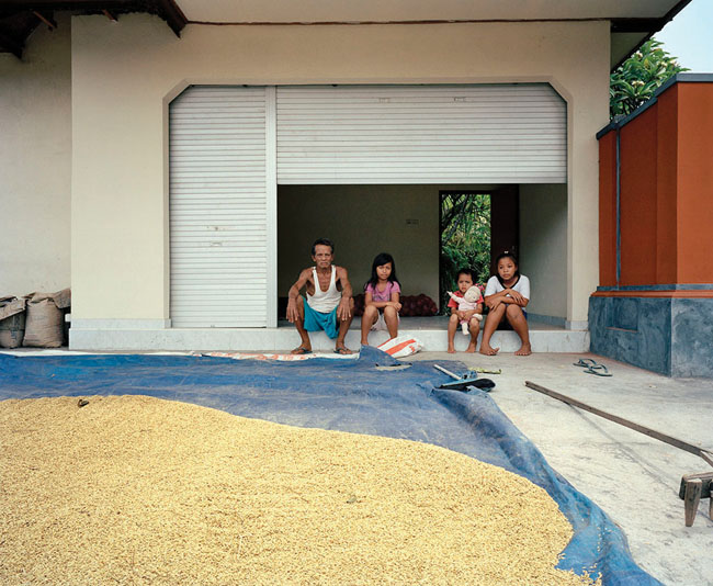 Indonesian Rice Workers