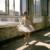 ballerina_04 thumbnail