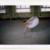 ballerina_12-841x667 thumbnail