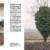 IL - Idee e Lifestyle del Sole 24 ORE (#IL100), April 2018 - La Bassa Padana è uno stato mentale - Text by Mattia Carzaniga, pp. 212-213 thumbnail