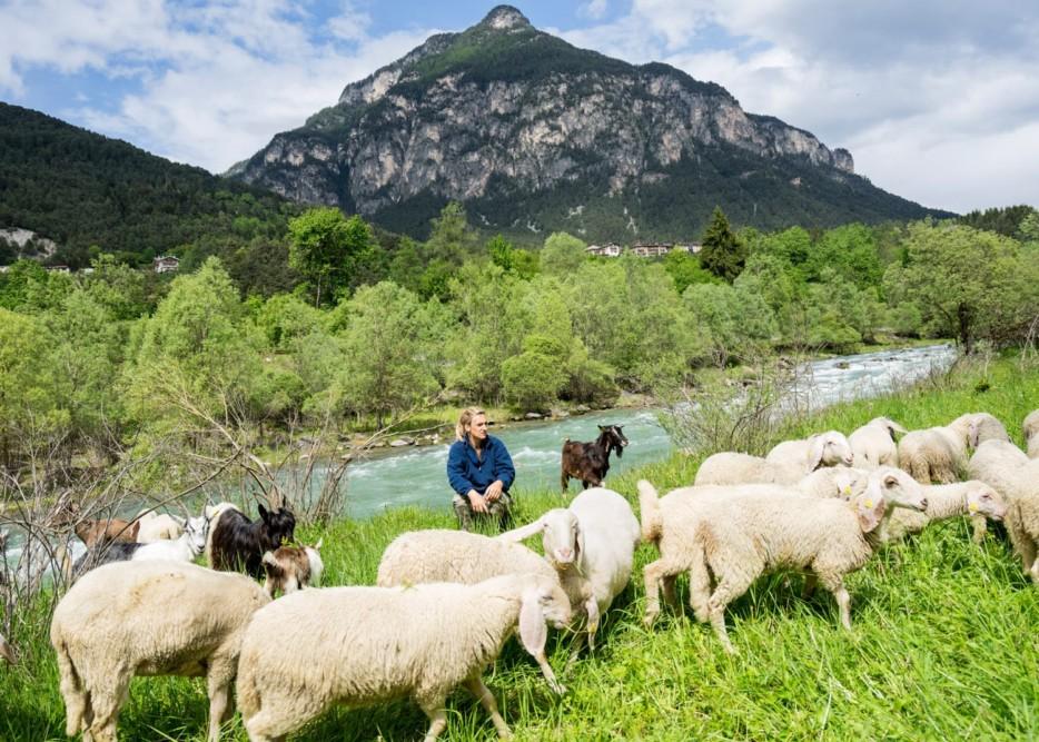 Trentino_WEB_002
