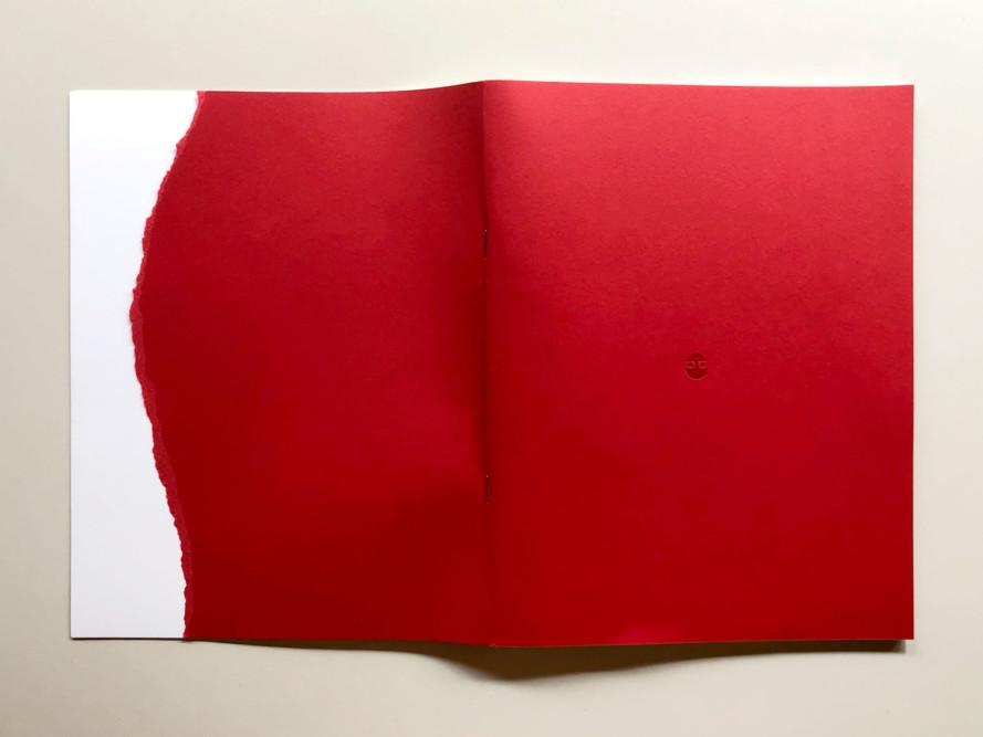ASOLO SINE QUA NON, a cura di Steve Bisson - Urbanautica Books, cover