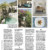 The New York Times Style Magazine - Wanderlust/Pantelleria. September 2018 thumbnail