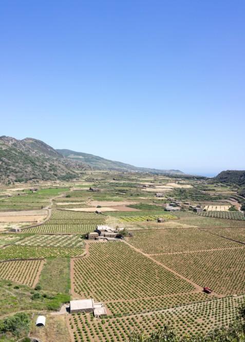 Pantelleria_T_30